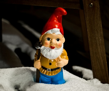 Give a Gnome a Home project